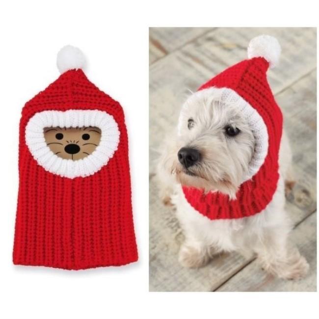 köpek için örgü şapka