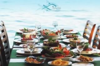 İskele Can Restaurant & Cafe, Sarıyer